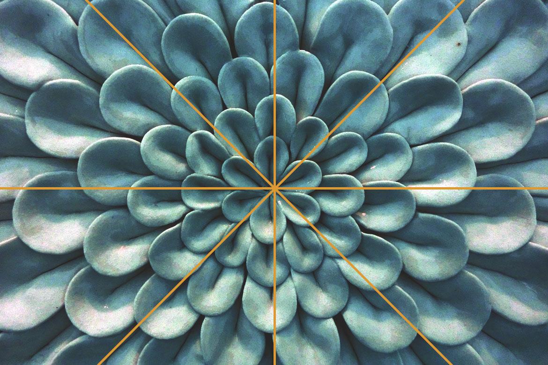 simetría en composición